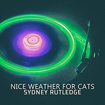 Nice Weather for Cats - EP