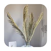 1ピース乾燥天然植物ヤシの葉ホームルームの装飾Diyドライフラワーパームファンの葉のためのパーティー芸術の壁掛け、結婚式の装飾 -A-1PC Only