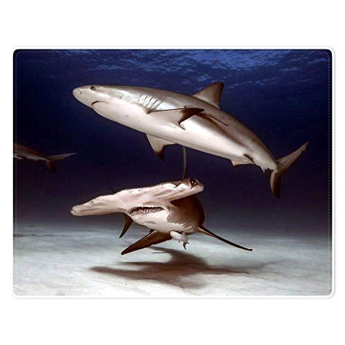Manta cálida y suave de franela de forro polar de 152 x 122 cm, decoración bajo el mar, diseño de tiburón ballena