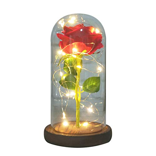 Ewige Rose im Glas Schöne & das Biest LED Künstliche Rose Blumen Konservierte Rose LED für Valentinstag Muttertag Lichterketten Romantisch Geschenk zum