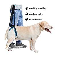 新しい調節可能な犬用リフトハーネス、後ろ足ペットサポートスリングヘルプ弱い足スタンドアップペット犬援助アシストツール,XL,China