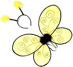 bee wings and antenna