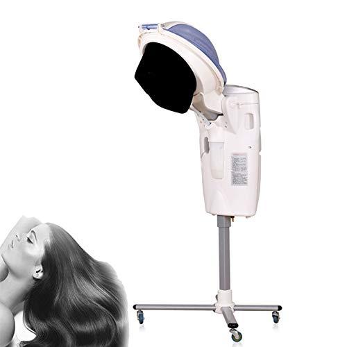 Casques Chauffants,850W Trois Principaux systèmes d'éclairage de Couleur Machine à Vapeur à l'ozone,Convient pour Le coiffage Permanent et Le Soin des Cheveux après la Teinture dans