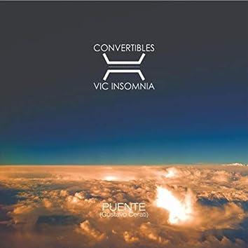 Puente (feat. Vic Insomnia)