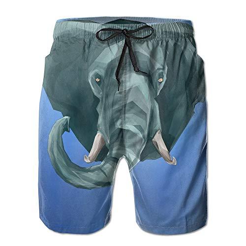Painting Elephant Icon Quick Dry Beach Board Shorts Swim Trunks X-Large