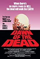 Dawn of the Dead George A. Romero's 24x36 Poster by hse