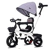 NUBAO Triciclo Tricycle Kids Thrike, 3 Ruedas bebé niños Push Silla Silla Manija Pedal Guiado Tronco con música Removable Tabla Asiento Reversible 8 Meses - 6 años (Color: Blanco)