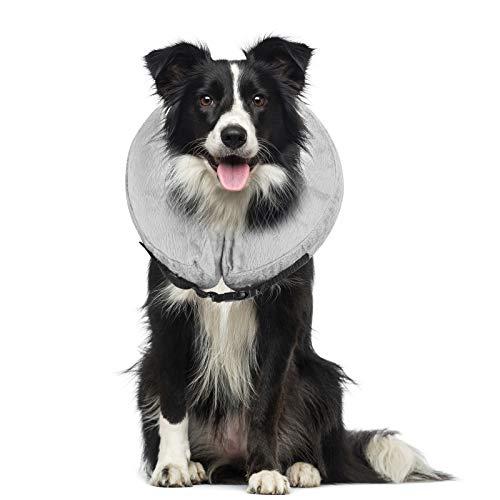 Petyoung Aufblasbares Halsband für Hunde und Katzen, weiches Halsband mit Verstellbarer Schnalle, ideal zur Erholung von Operationen oder Wunden, blockiert Nicht die Sicht (M, Grau)
