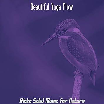 (Koto Solo) Music for Nature