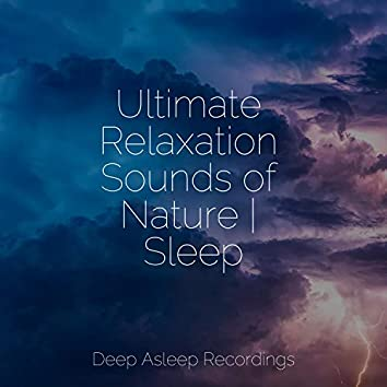 Ultimate Relaxation Sounds of Nature | Sleep