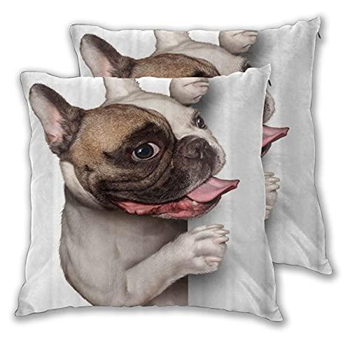 LONSANT Fundas de Cojines 55x55cm,Un Bulldog francés con una expresión Feliz y Sonriente,decoración Cuadrado Fundas de Almohada Funda de cojín para sofá Dormitorio,Pack de 2