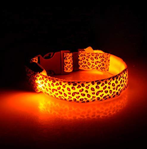 Hundehalsband, Hunde Leuchthalsband LED Halsband, USB Aufladbar,Länge Kann Eingestellt Werden,Orange,M