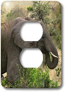 3dRose LLC lsp_9877_6 African Elephant Masai Mara National Park Kenya Africa, 2 Plug Outlet Cover