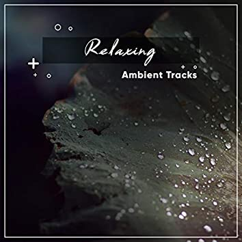 20 Relaxing, Ambient Tracks for Enlightenment
