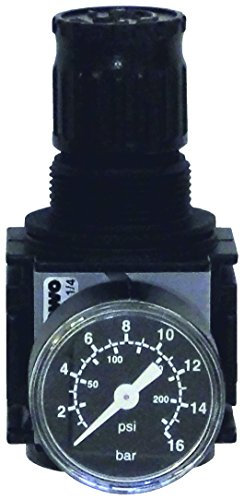 EWO 481223.0 Druckluft-Druckminderer variobloc G 1/4