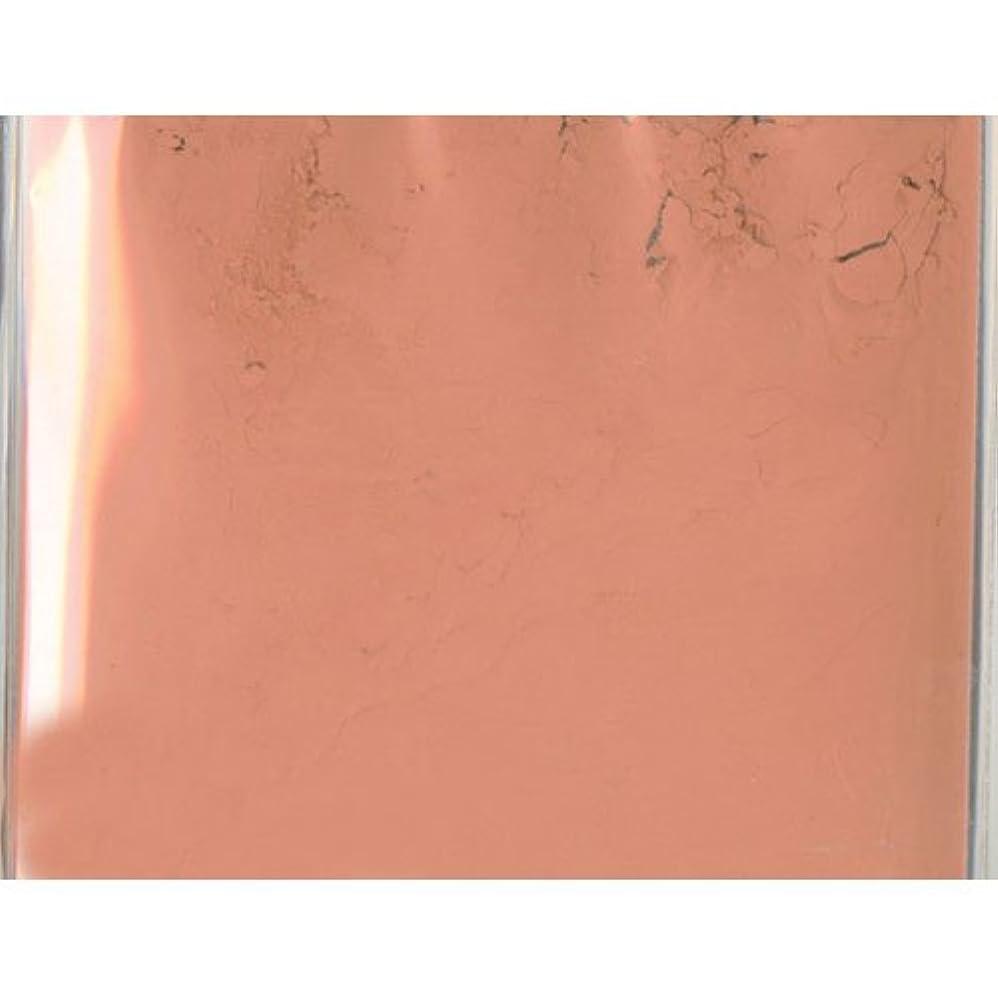 そっと収益準備したピカエース ネイル用パウダー ピカエース カラーパウダー 透明顔料 #982 ナチュラルブラウン 2g アート材