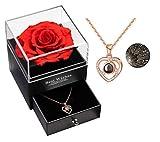 Collana rosa reale con amore collana Set regalo collana, incantato fiore rosa conservato eterno fatto a mano rosa reale per lei il giorno di San Valentino, compleanno, festa della mamma (Rosso)