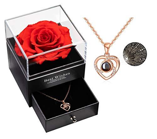 Konservierte Rose mit Liebe Sie Halskette 100 Sprachen Halskette Geschenkset, Verzauberte echte Rose Ewige Rosenblume für Freundin Frau am Valentinstag, Geburtstag, Muttertag (Rot)