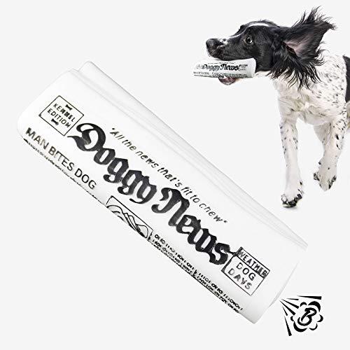 NAMSAN Hundespielzeug Interaktives Spielzeug für Hunde hundespielzeug Quitschend Squeeze Hundespielzeug für Kleiner / Mittlerer Hunde