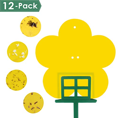 Sticky Traps 12 Pack Sticky Fruit Fly and Gnat Trap Yellow Sticky Bug Traps for Indoor/Outdoor Use  Insect Catcher for White Flies Mosquitos Fungus Gnats Flying Insects  Disposable Glue Trappers