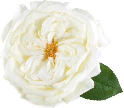 Ivoor Wit Rose Haar Clip & Corsage