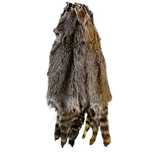 Glacier Wear Central Raccoon Fur Pelt Hide (2XL - 38-42 inches)