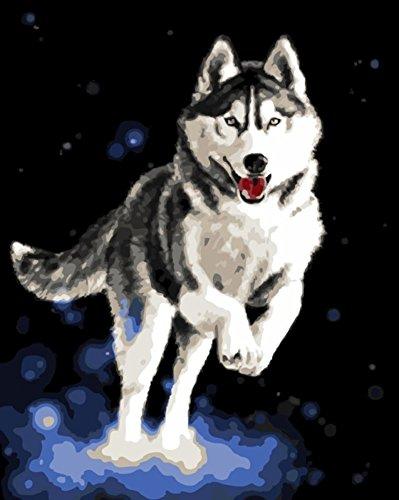 WOWDECOR Kit de pintura por números, pintura de números - Husky Dog 40,6 x 50,8 cm (sin marco)