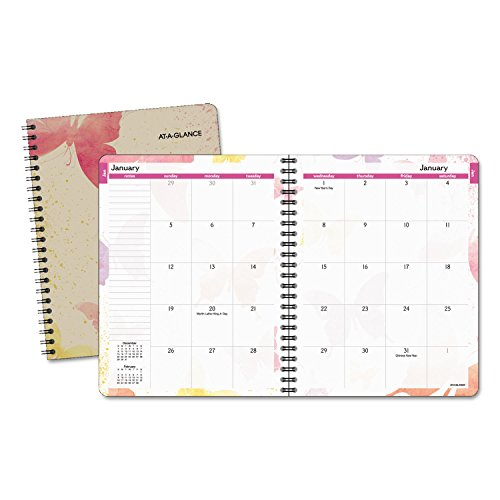 AT-A-GLANCE Monthly Planner 2017, Watercolors, 6-7/8 x 8-3/4 Inches (791-800G)