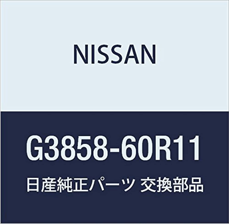 NISSAN(ニッサン)日産純正部品ボード ラック G3858-60R11