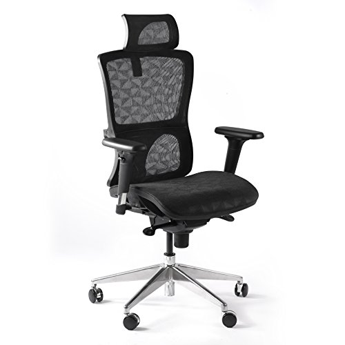 CCTRO Mesh Ergonomic Office Chair with Adjustable Headrest and Padded Flexible Armrest, 360 Degree Swivel Modern Computer Task Chairs for Home Office