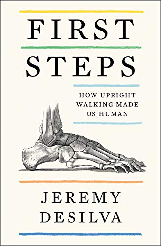 Compare Textbook Prices for First Steps: How Upright Walking Made Us Human  ISBN 9780062938497 by DeSilva, Jeremy