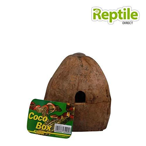 Lucky Reptile Cachettes pour reptiles et amphibiens