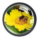 Perillas de tocador negras Flor de abeja Tiradores de gabinetes de vidrio transparente, redondo, negro, tiradores de cajones para paquete de 4