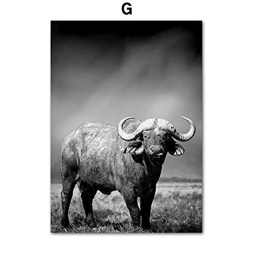 SDFSD dieren Afrikaanse wilde runen Nordic poster en druk dieren muurkunst schilderijen wandschilderijen woonkamer decoratie huis 50 x 70 cm