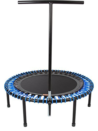 "bellicon Plus 44"" with Fold-Up Legs (Black Mat/Blue Bungees, Ultra-Strong Bungees (280-440 lbs))"