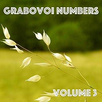 Grabovoi Numbers, Vol. 3