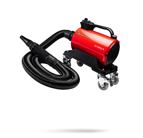 auto blower - 1
