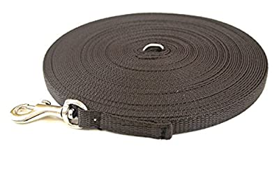 Church Products UK 20ft 6m Dog Training Lead Puppy Obedience Leash 13mm Strong Webbing In (Brown)