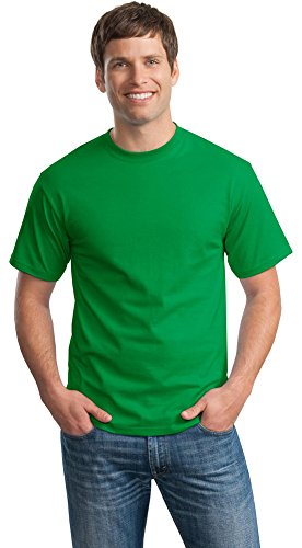 Hanes Mens Tagless 100% Cotton T-Shirt, Large, Shamrock Green