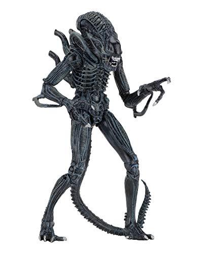 NECA - Alien- 7' Scale Action Figures - Ultimate Warrior - (1986) Blue Alien