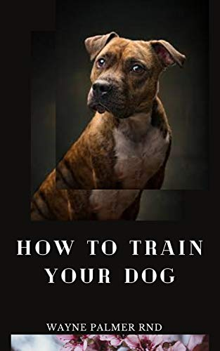 HOW TO TRAIN YOUR DOG: The Excellent Guide On How To Train Your Dog To Be Obedient And Well Behaved (English Edition)