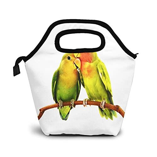 Bolsa Térmica Comida Bolsas De Almuerzo Para Mujeres Hombres Niñas Niños Bolsa Isotérmica De Almuerzo Pájaro Loro Agapornis