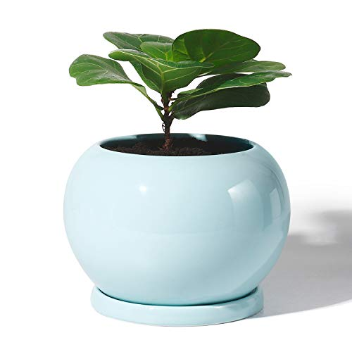 POTEY Planter Ceramic Plant Flower Pot - 5 Inch Large Indoor Glazed Container Bonsai with Drainage Hole Saucer - Large Space - Golbe,Turquoise