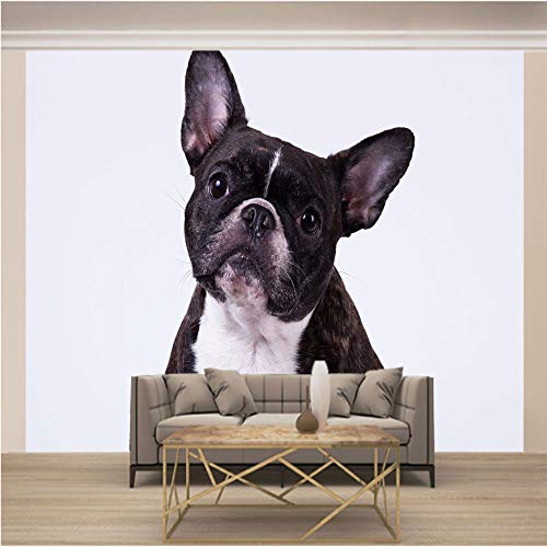 Brick Wall Effect Wallpaper Animal Dog Bulldog Non-Woven Mural 3D Picture Poster Living Room Kids Bedroom Office Modern Minimalist Design for Home Decor 250x175cm