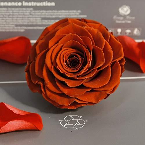 DRI Flor Seca 1 PCS Flores preservadas Flor Inmortal Rose 9CM de diámetro Regalo del día de la Madre Vida eterna Flor Material Caja de Regalobermellón