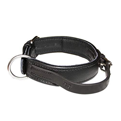 Julius-K9 Eco Leather Collar with Adjustable Handle, 40 mm x 75 cm