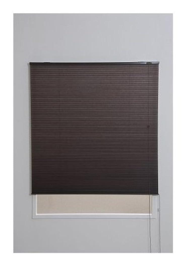 お客様鋭く有限ハニカムスクリーン 彩 幅60×高さ135cm ブラウン