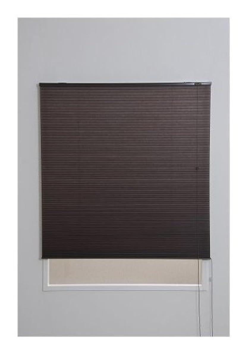サーキットに行くピッチプレフィックスハニカムスクリーン 彩 幅60×高さ135cm ブラウン