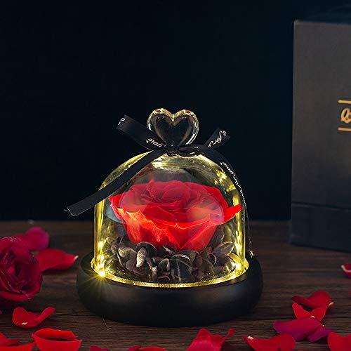Die Schöne Und Das Biest Rose Ewige Rose Im Glas Mit Led-Lichtern, Enchanted Infinity Konservierte Rosen Fur Frauen, Mama, Geburtstagsgeschenk, Hochzeitstaggeschenk, Valentinstag, Rot