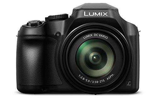 Panasonic Lumix DC-FZ82 - Cámara Bridge de 18.1 MP (Zoom de...